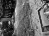 2-sowjetischer-sodlatenfriedhof-eichgraben-web