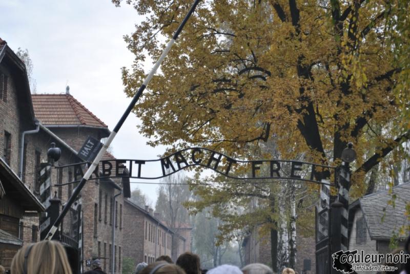 auschwitz_23-10-2010-009