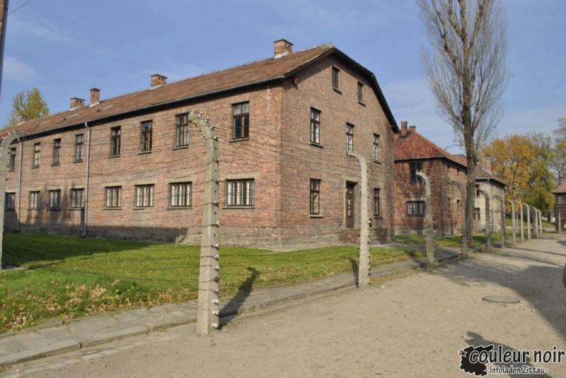 auschwitz_23-10-2010-053
